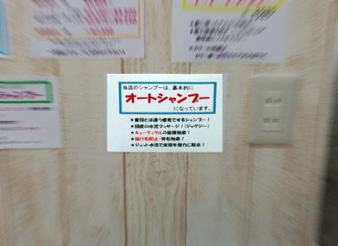 PeaceSA2012_0629AB.JPG